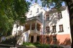 Pałac wWitosławiu